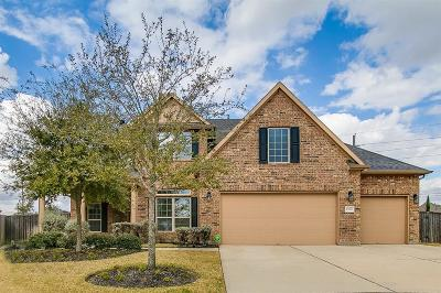 Fulshear Single Family Home For Sale: 27606 Great Sky Court