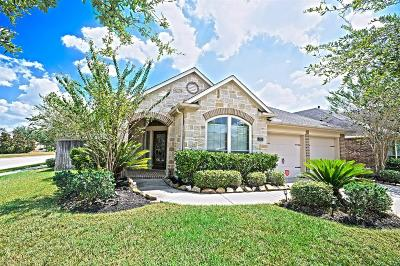 Katy Single Family Home For Sale: 2903 Fair Chase Drive
