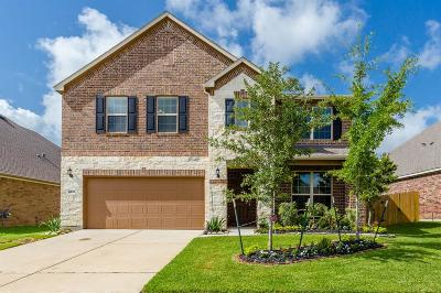 Tomball Single Family Home For Sale: 9015 Running Eagle