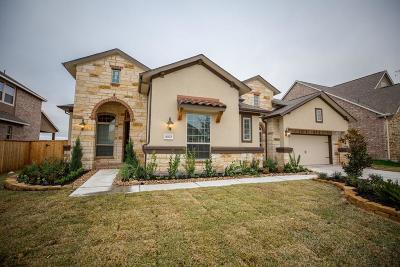 Cypress Single Family Home For Sale: 16622 Wolf Pass Drive