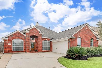 Tomball Single Family Home For Sale: 19027 Canyon Frost Drive