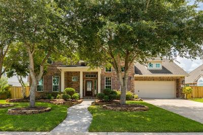 League City Single Family Home For Sale: 5325 Southchase Lane