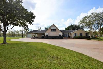 Pearland Single Family Home For Sale: 1718 Max Road
