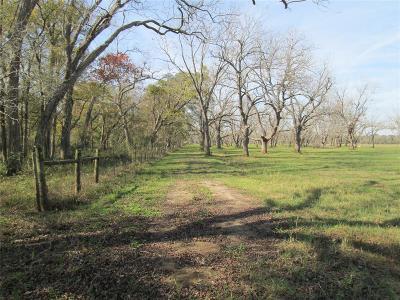 Fort Bend County Farm & Ranch For Sale: Yu Jones Road