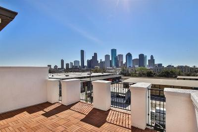 Houston Single Family Home For Sale: 1708 Dart Street