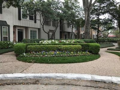 Houston Condo/Townhouse For Sale: 3713 Wakeforest Street #3713