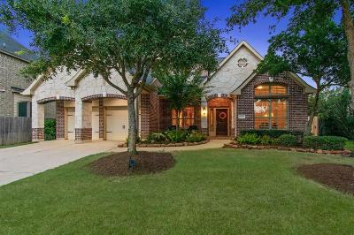 Katy Single Family Home For Sale: 27310 Waterford Glen Lane