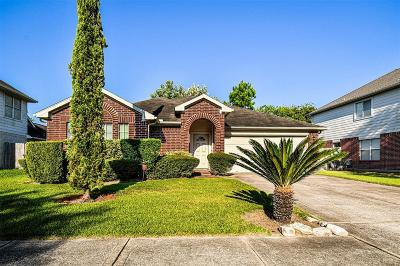 Pearland Single Family Home For Sale: 2210 Land Street