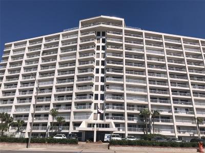 Galveston Mid/High-Rise For Sale: 7700 Seawall Boulevard Boulevard #304