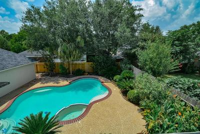 Galveston County, Harris County Single Family Home For Sale: 1318 Hopkins Park Drive