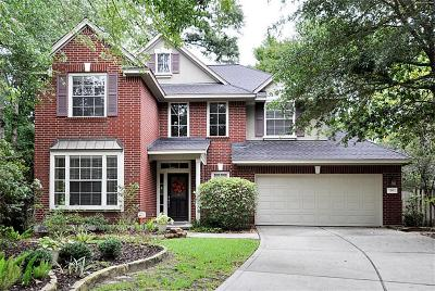Single Family Home For Sale: 19 Beech Bark Place