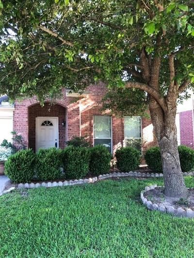 Katy Single Family Home For Sale: 19519 N Rum River Ct Court N