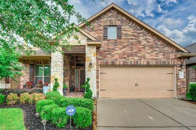 Webster Single Family Home For Sale: 622 Pedernales Street