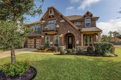 Spring Single Family Home For Sale: 19102 Lost Mine Trail