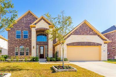 Rosenberg Single Family Home For Sale: 807 Oak River Lane