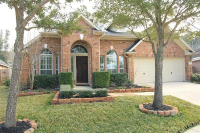 Houston Single Family Home For Sale: 15802 Azalea Shores Court