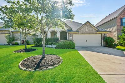 Katy Single Family Home For Sale: 2823 McDonough Way