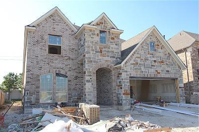 Webster Single Family Home For Sale: 520 Pedernales Street