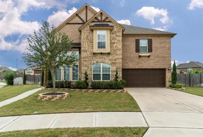 Sugar Land Single Family Home For Sale: 4011 Sandstone Bend Court