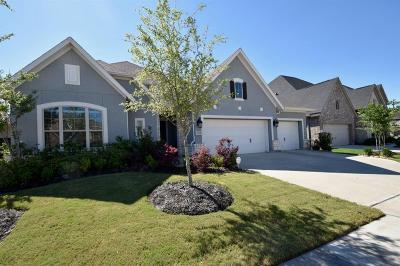 Cane Island Single Family Home For Sale: 2207 Karankawa Trail