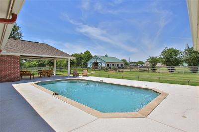 Cypress Single Family Home For Sale: 17222 Winding Oak Court