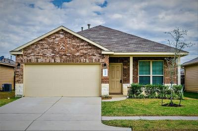 Katy Single Family Home For Sale: 20438 Chatfield Bend Way