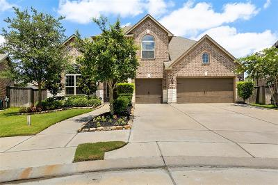 Katy Single Family Home For Sale: 27906 Burchfield Grove Lane