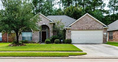 Tomball Single Family Home For Sale: 17635 Memorial Springs