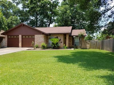Houston Single Family Home For Sale: 2603 Tinechester Drive