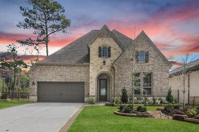 The Woodlands Single Family Home For Sale: 34 Madrone Terrace Place