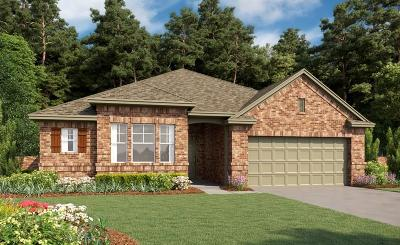 Texas City Single Family Home For Sale: 12708 Flora Manor Drive