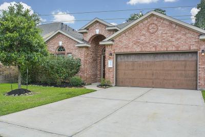 Single Family Home For Sale: 18703 Crystal Cascade Lane