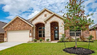 Conroe Single Family Home For Sale: 12269 Emerald Mist Lane