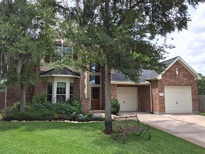 Missouri City Single Family Home For Sale: 8864 Snowy Owl Loop