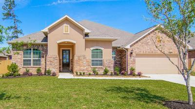 Conroe Single Family Home For Sale: 2070 Brookmont Drive