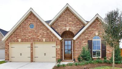 Single Family Home For Sale: 6915 Brazos Trail Court