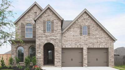 Pearland Single Family Home For Sale: 13802 Granite Manor Lane