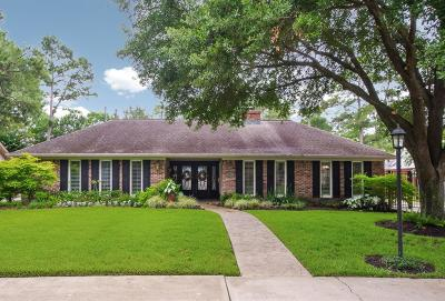 Houston Single Family Home For Sale: 10027 Bordley Drive