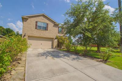 Spring Single Family Home For Sale: 28902 Rio Grande River Drive