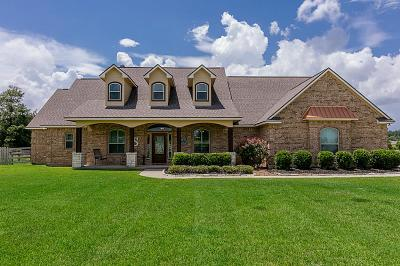 Montgomery Single Family Home For Sale: 18411 Gary Player Drive