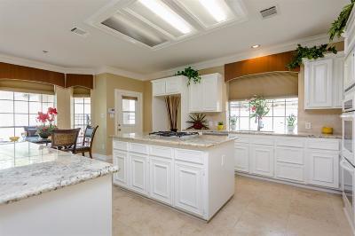 Sugar Land Single Family Home For Sale: 7611 Shady Way Drive