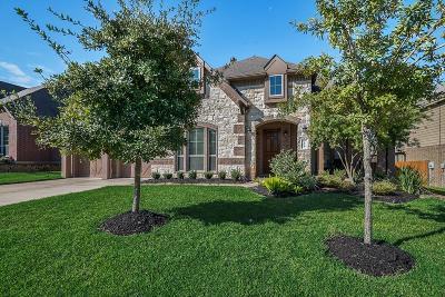 Conroe Single Family Home For Sale: 116 Owen Ridge Drive