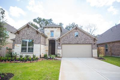 New Caney Single Family Home For Sale: 18818 Swansea Creek Drive