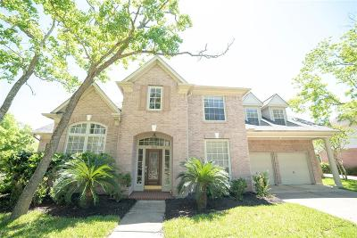 Houston Single Family Home For Sale: 3503 E Pine Brook Way