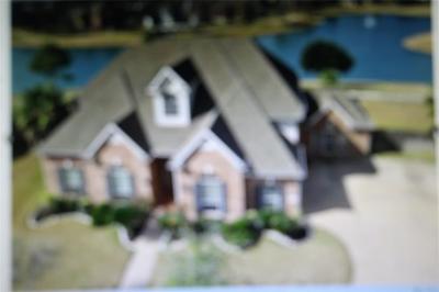 Sugar Land Single Family Home For Sale: 15206 Newport Bridge Circle