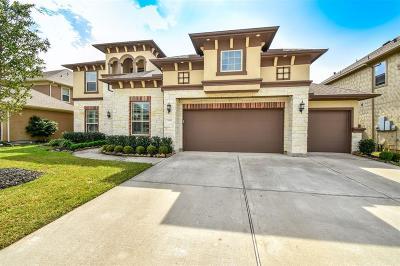 League City Single Family Home For Sale: 4818 Isla Canela Lane