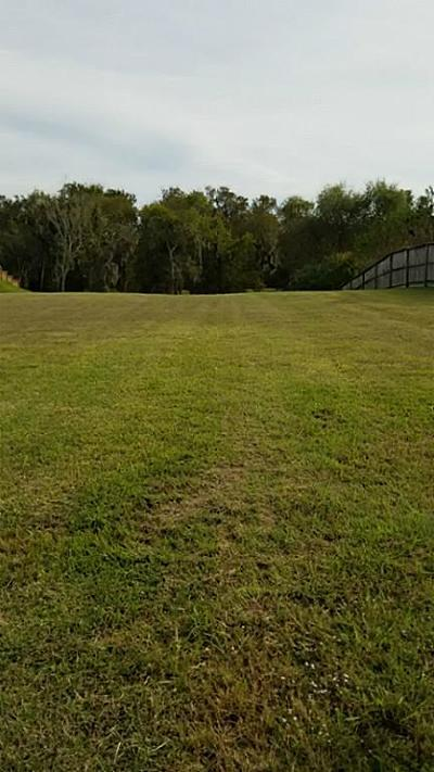 Friendswood Residential Lots & Land For Sale: 413 Hunters Lane