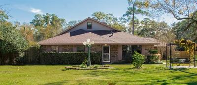Houston Single Family Home For Sale: 2517 Creekhickory Road