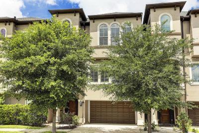 Houston Single Family Home For Sale: 1605 Sandman Street