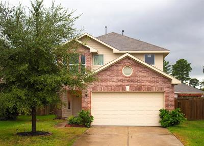 Tomball Single Family Home For Sale: 11423 Hemington Drive